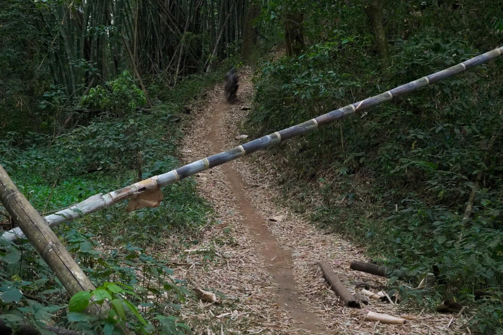 Controlled Zone In Myanmar's Karen State - New Naratif