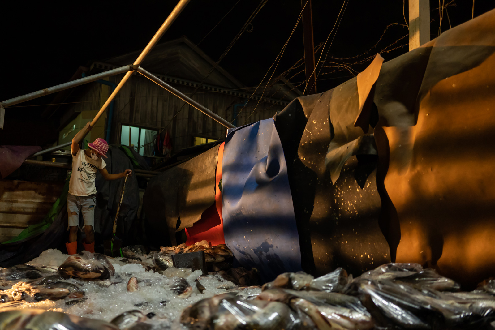 A worker offloads a truck importing fish from Vietnam to Cambodia at Phnom Penh's Prek Pnov Market.